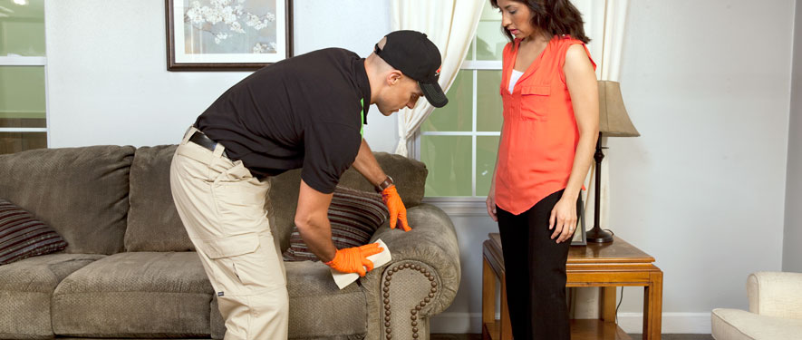 North Kingston, RI carpet upholstery cleaning